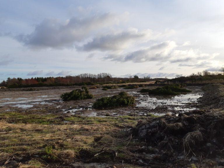 grävning våtmark byvik lappo