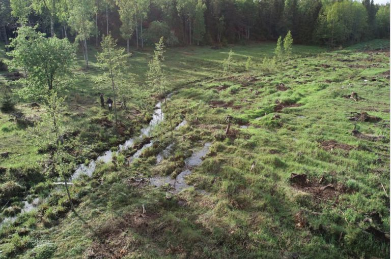 drönarbild blivande våtmark