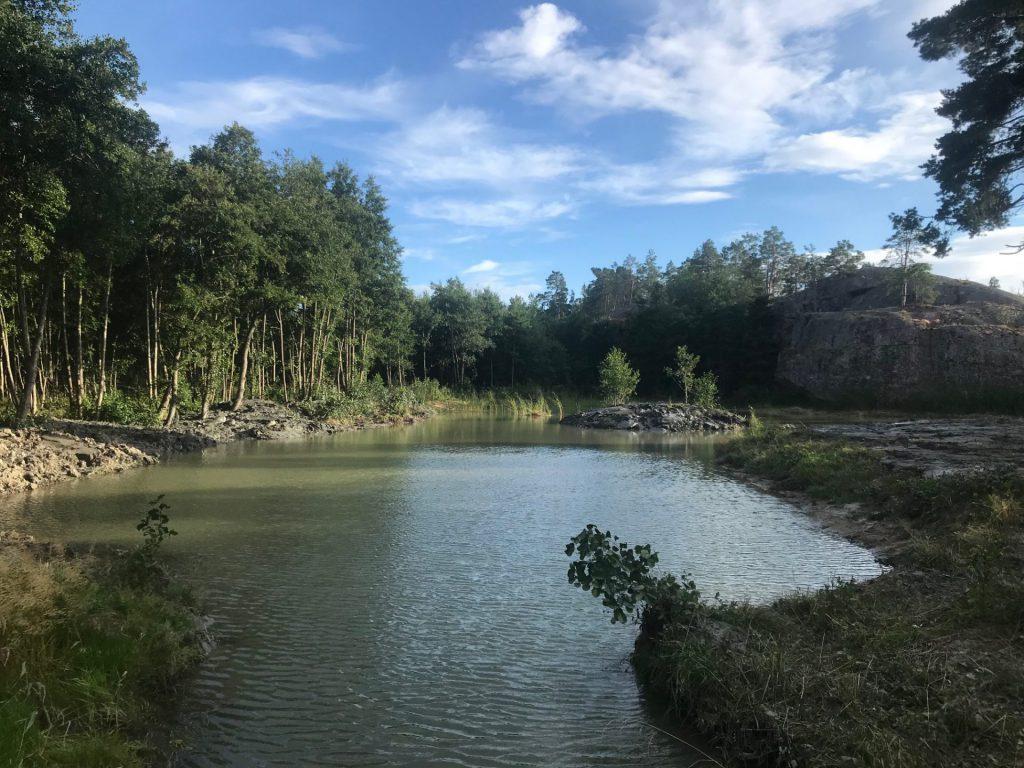våtmark